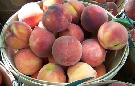 Texas Hill Country Peaches