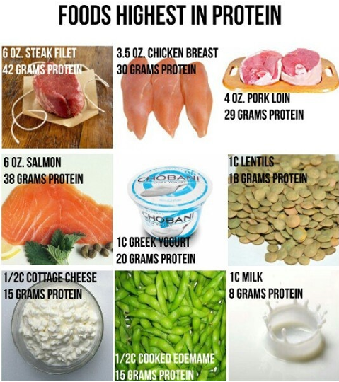 Highest Protein Fast Foods