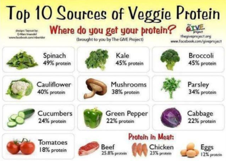 Sources For Veggie Protein